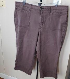 Size 18 Brown Capris